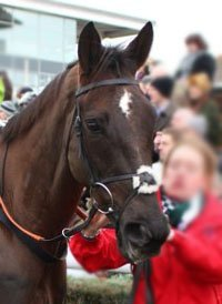 Hennessy Gold Cup history