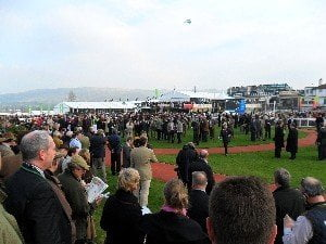 Cheltenham Festival 2014: Maher targets repeat success with Big Shu