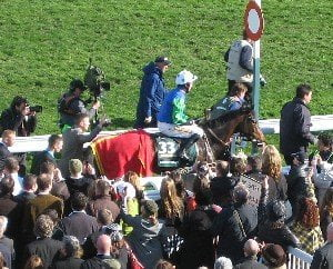 Grand National 2011: Who's the daddy?