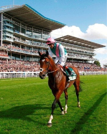 British Champions Day 2012: Frankel Facts