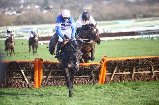 New Juvenile Hurdle Races introduced