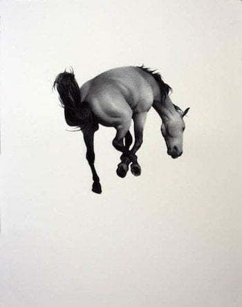 Horses in a new light at The Horsebox Gallery