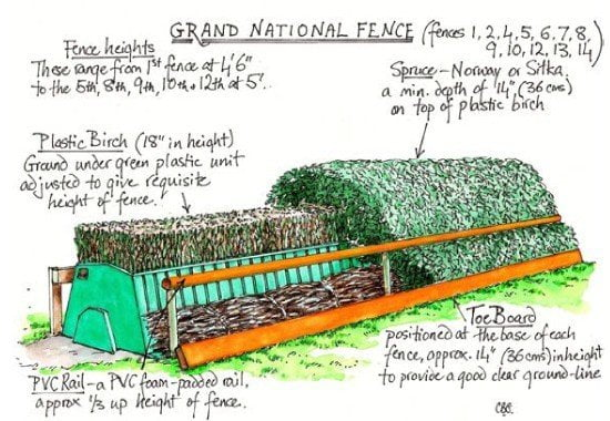 Grand National horse welfare and successful modifications