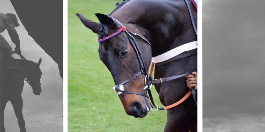 Royal Ascot 2016
