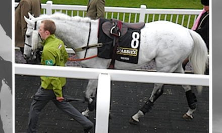 FACTS: Grand National Grey Horses