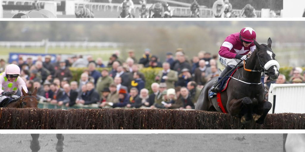 highest rated jumps horse