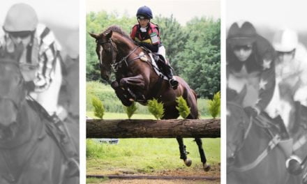 Kelly Harrison and Daredevil From Racecourse to Event Horse: Kelly Harrison and Daredevil Boy