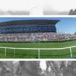 Doncaster St Leger 2019: Logician leads remaining 11 horses in the betting