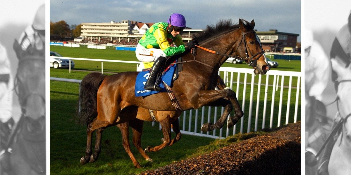 Quick Guide to Betfair Chase Day