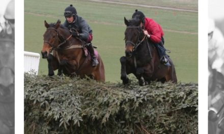 Grand National schooling fences ready later this week