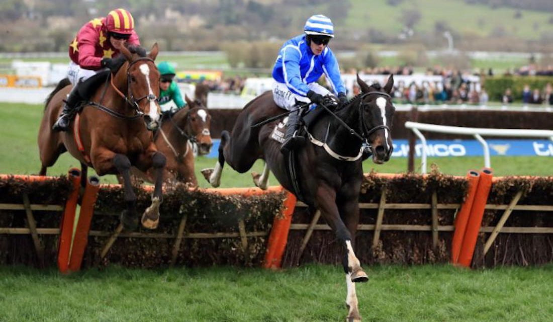 Quick Guide to The November Meeting (formerly The Open) at Cheltenham