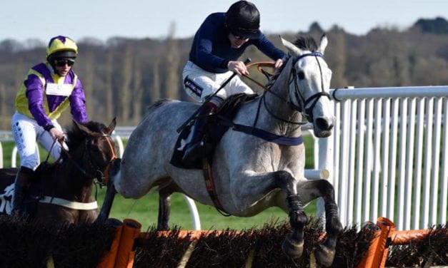 Snow Leopardess & Deauville Crystal star on Be Wiser Jump Season Finale at Newbury Racecourse