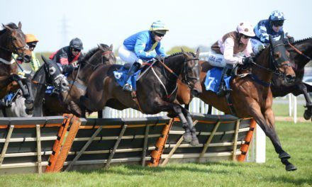 Countdown to exciting season of horse racing at Newton Abbot's newly-improved course
