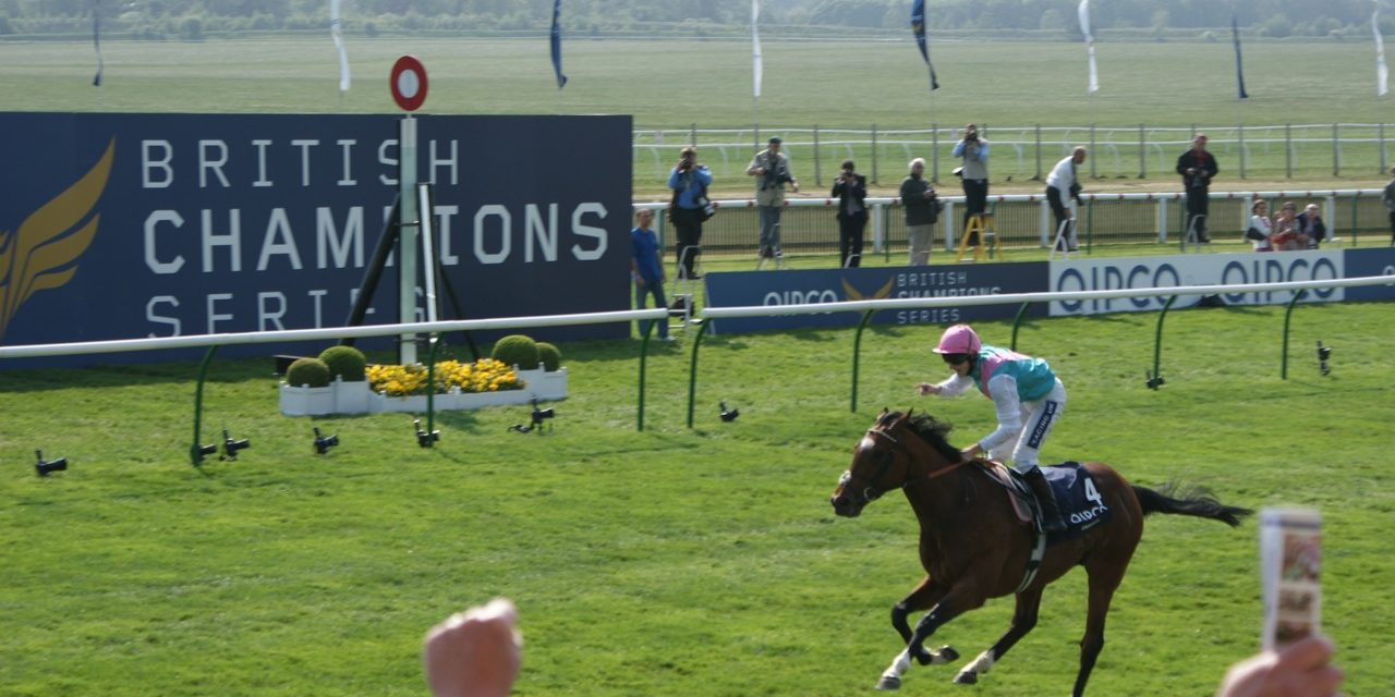 Guide to the Guineas Festival