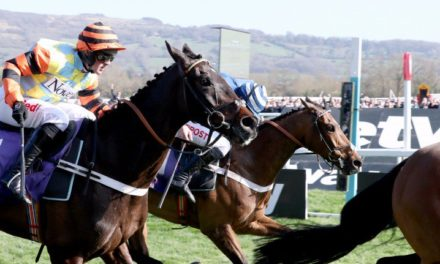 Might Bite On Course For Cheltenham Gold Cup Success?