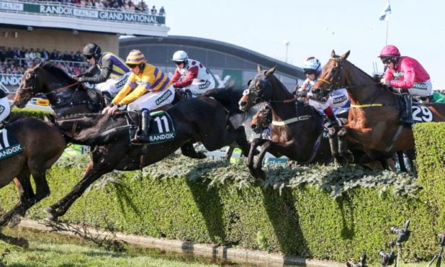 Grand National 2019: £1.5 million investment in Turf and Improvements for Horse Welfare