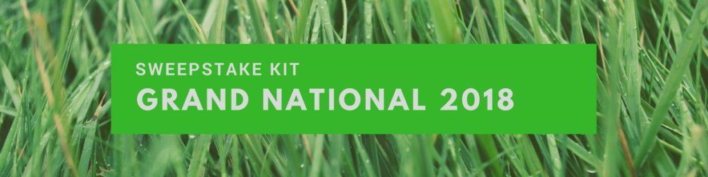 Grand National 2018 Sweepstake Kit
