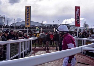 CheltFest18_RG_racecourse-7