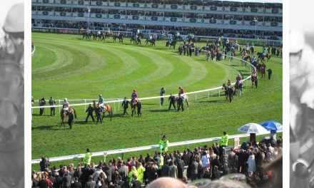 Eclipster: Using Statistics to Narrow the Grand National Field