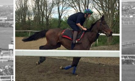 Grand National 2018: Guy Disney set for historic ride over GN fences in Foxhunters' Chase – with prosthetic leg