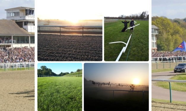 Lingfield nominated for the Professional Horse Racing Grounds Team Awards 2018