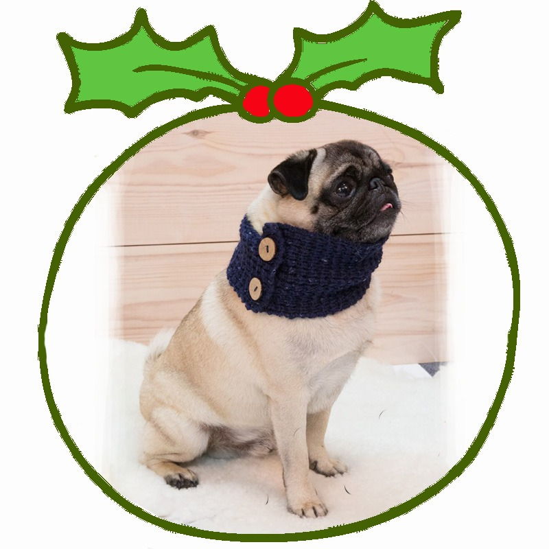 Christmas Gifts for Pets - Eclipse Magazine