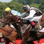 Top 5 Preakness Stakes Betting Trends