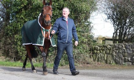 The Festival 2019: Presenting Percy is all set for the Gold Cup