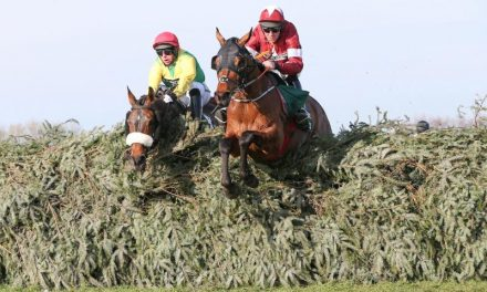 Grand National 2019: Tiger's Victory Roll
