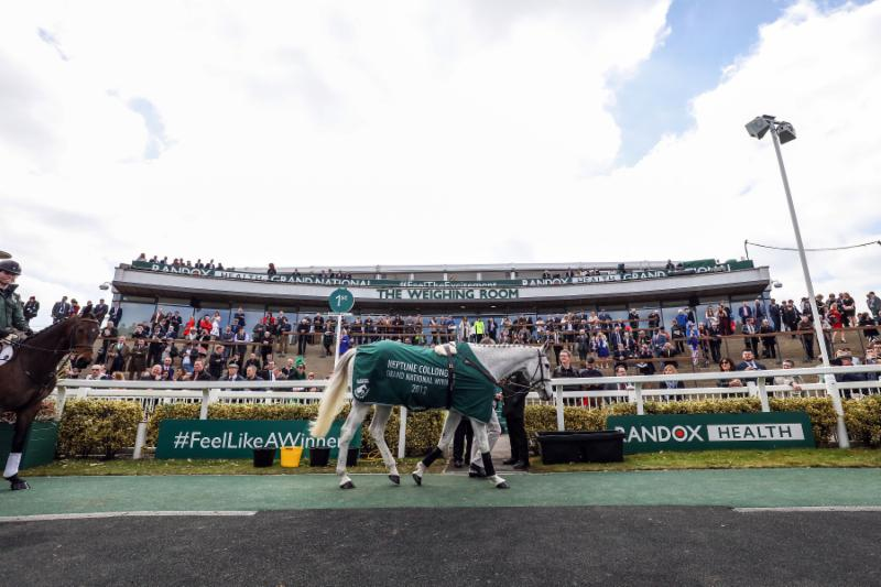 Grand National 2019: Parade of Champions to feature seven GN winners
