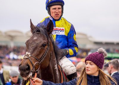 RG CheltFest19 Harry Skelton and Ecco