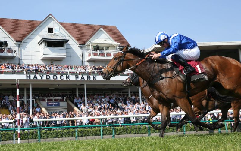 Eclipster: Temple Stakes at Haydock – Battaash looks hard to beat