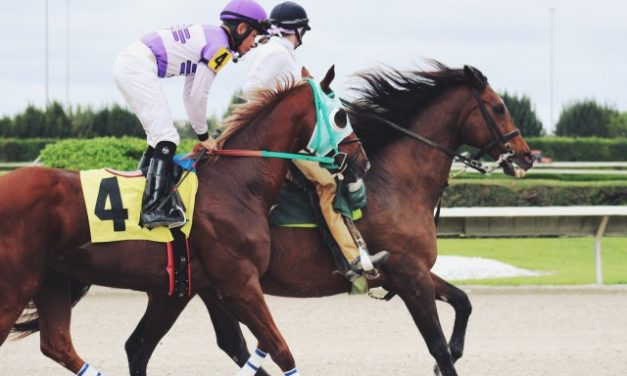 Horse Racing: Preparation for Big Events