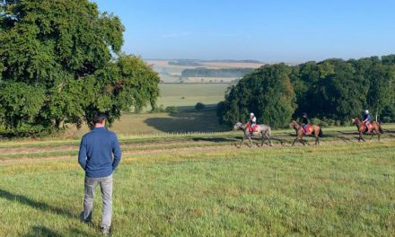 Glorious Goodwood 2019: Battaash and Phoenix Of Spain head Hills team