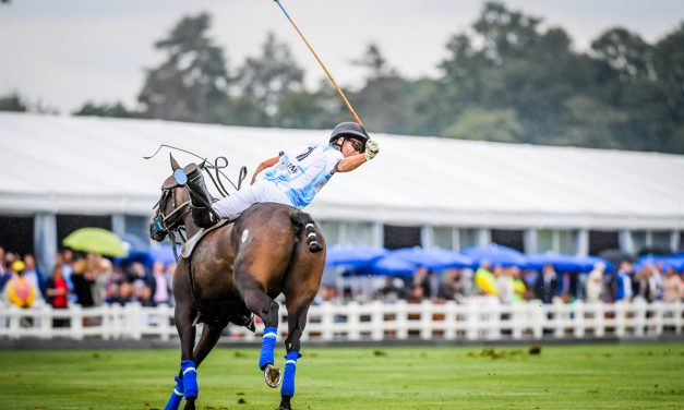 Retired Racehorses Play Polo