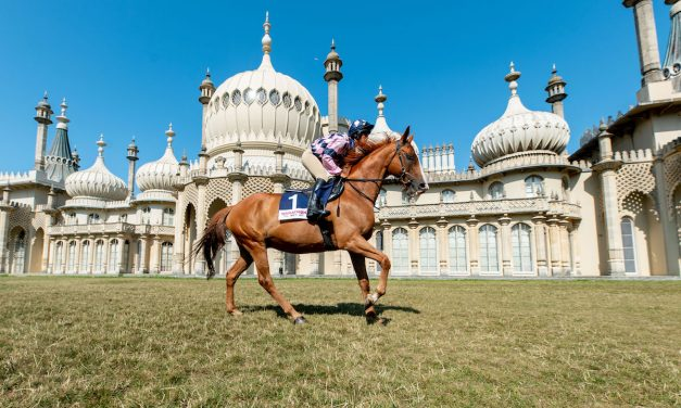Sire de Grugy enjoys outing to the Royal Pavilion ahead of Brighton's Festival of Racing
