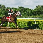 Horse Racing in America – The most glamorous US racecourses