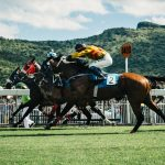 Best UK horse racing events for the rest of 2019