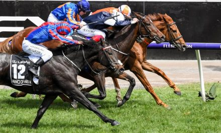 Dramatic Finish to 2019 Melbourne Cup