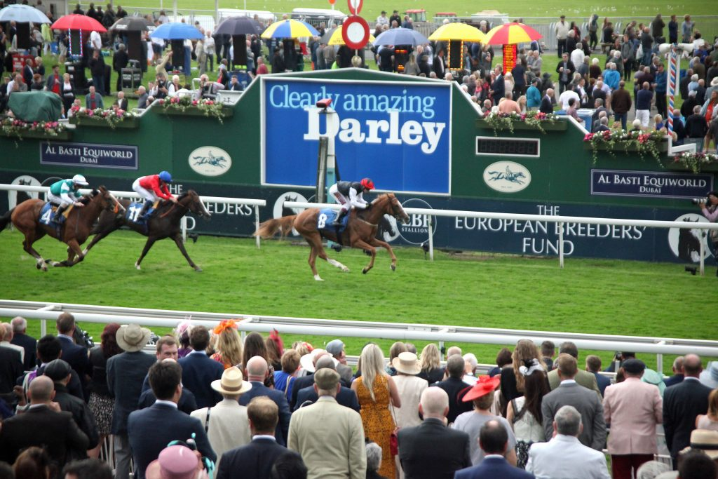 IY Galtres Stakes 2019 York Search For A Song