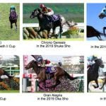 Japan's Plans for Spring Racing